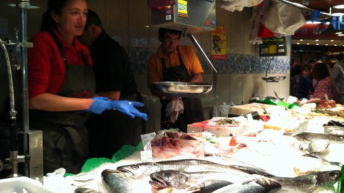 peix.cat - Fondo